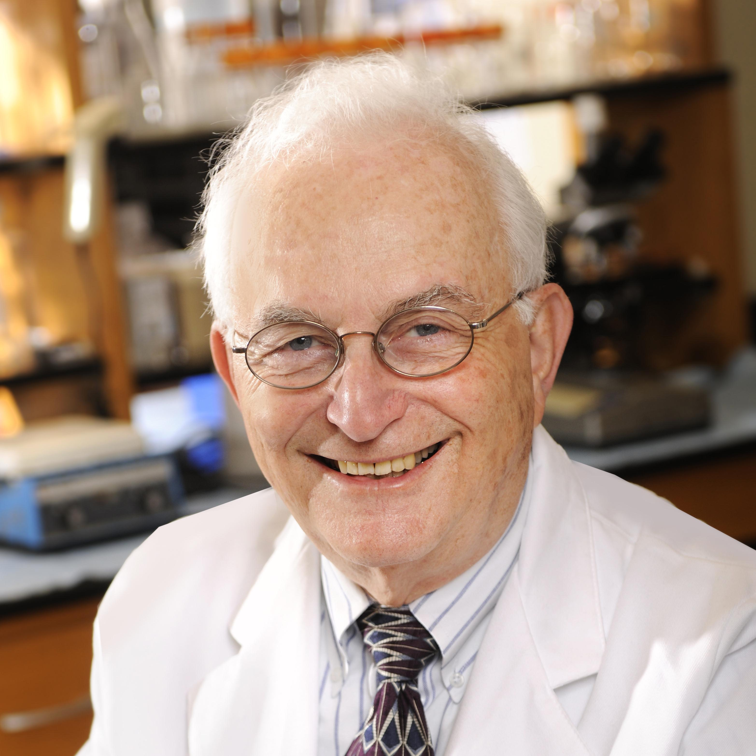 Donald Stein Ph.D.